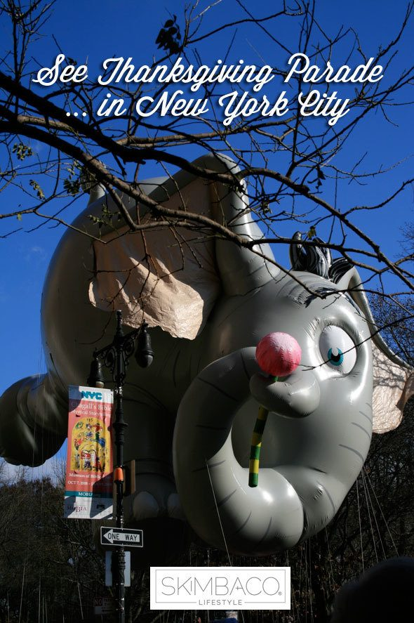 Bucket list - see Thanksgiving parade in New York City