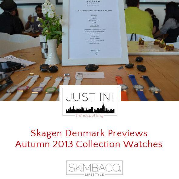 Skagen-Denmark-Previews-Autumn-2013-Collection-Watch