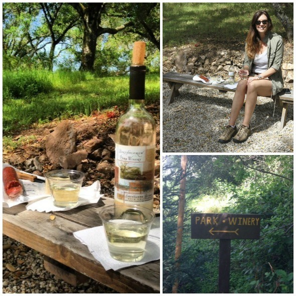 Picnic at Bartholomew Park Winery