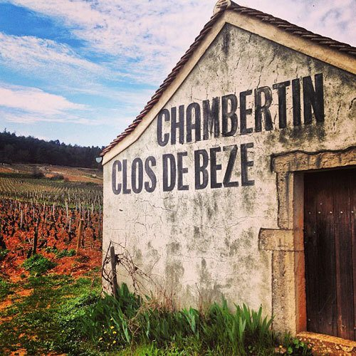 Chambertin clos de Beze in Burgundy, France. Instagram travel photo by @skimbaco