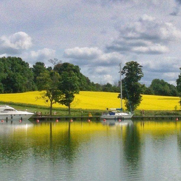 Göta kanal. Bergs locks. Sweden. #IGTravelThursday