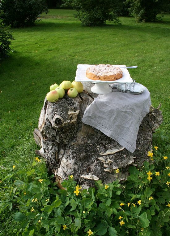 Apple cake served in the garden