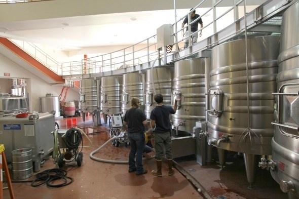 Vineyard 29 Barrel Room
