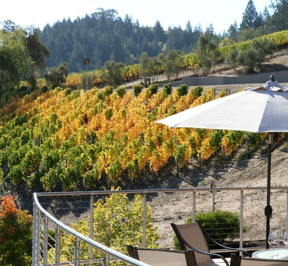 Vineyard 29 property