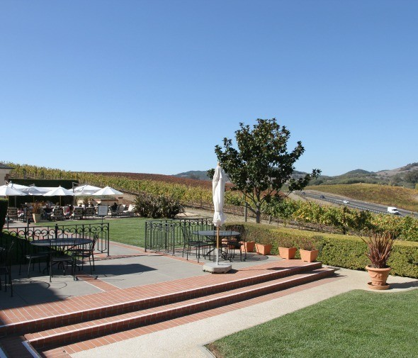 Grounds of Domaine Carneros