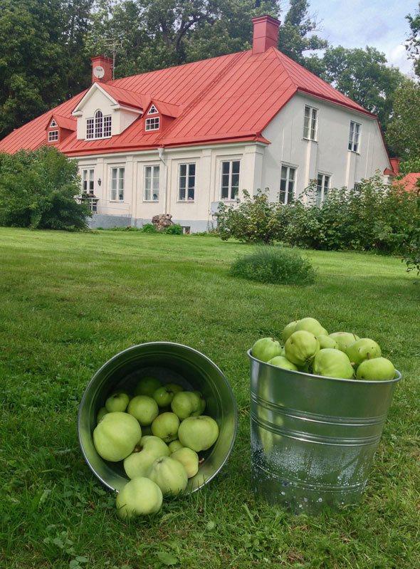 swedish-country-mansion