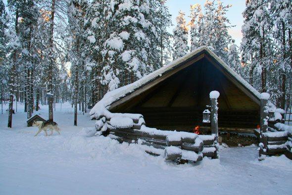 Lapland safari