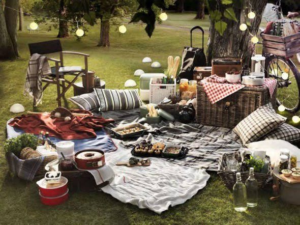 host a fun backyard picnic