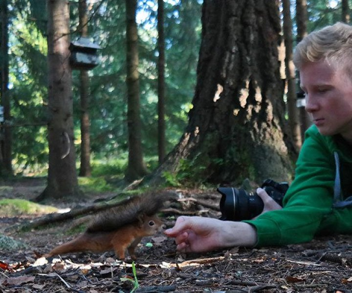 Interview with the Instagram-famous squirrel whisperer Konsta Punkka
