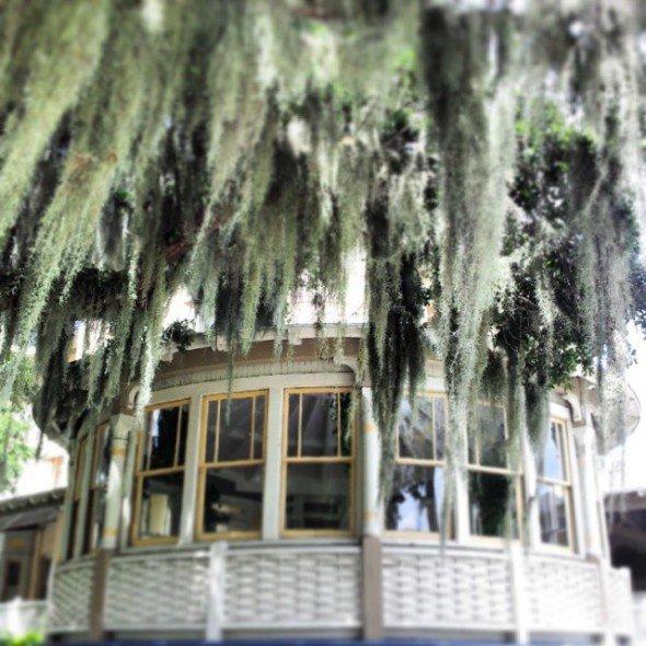 haunted islands, Jekyll Island Club Hotel,