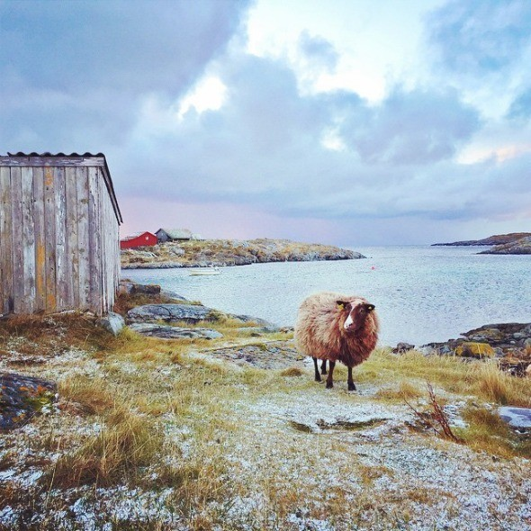 Island Life on Givær, Northern Norway I @SatuVW I Destination Unknown