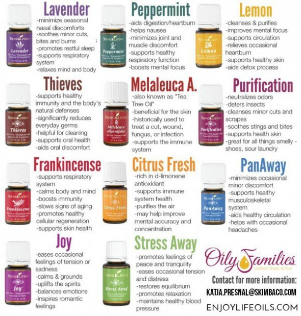 The Everyday Essential Oils are a great way to start exploring more about essential oils.