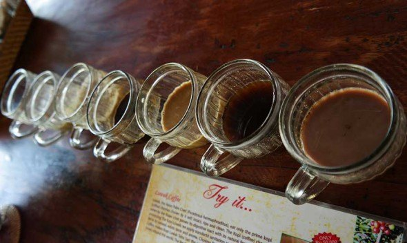coffee-tasting-in-bali