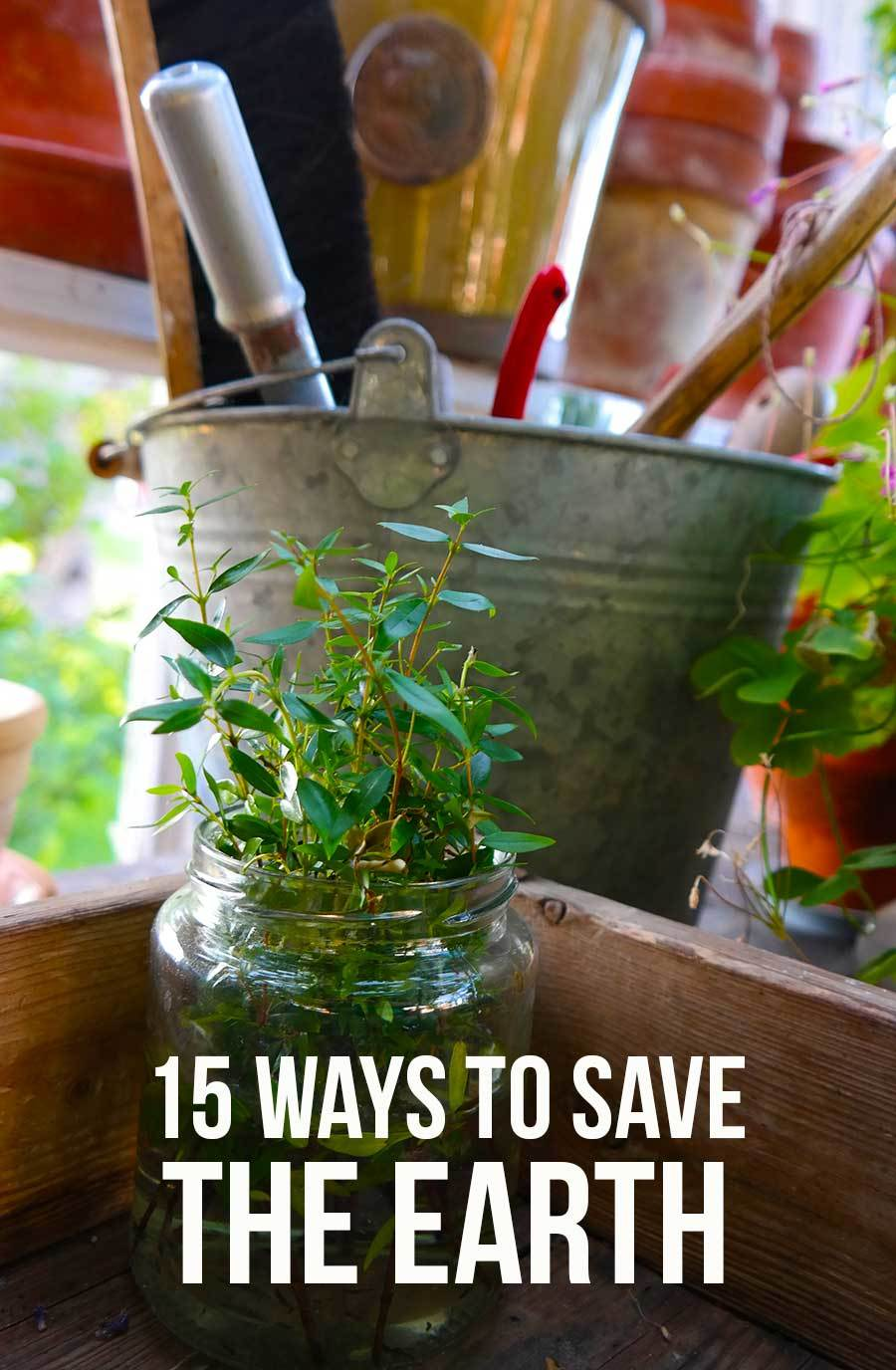 15 easy ways to save the earth
