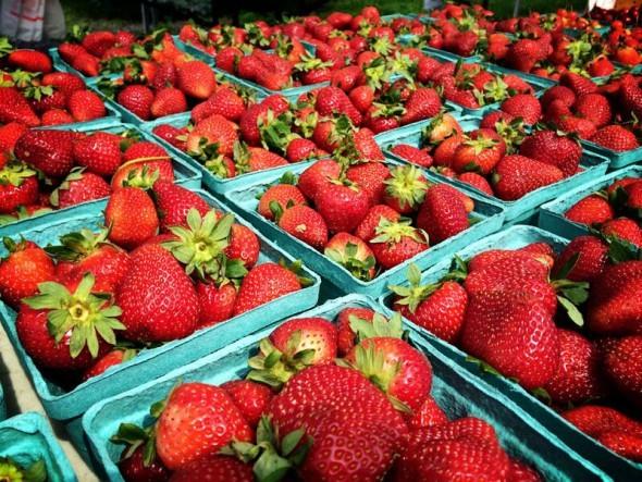 strawberries farmers market in Middleburg VA by Keryn Means