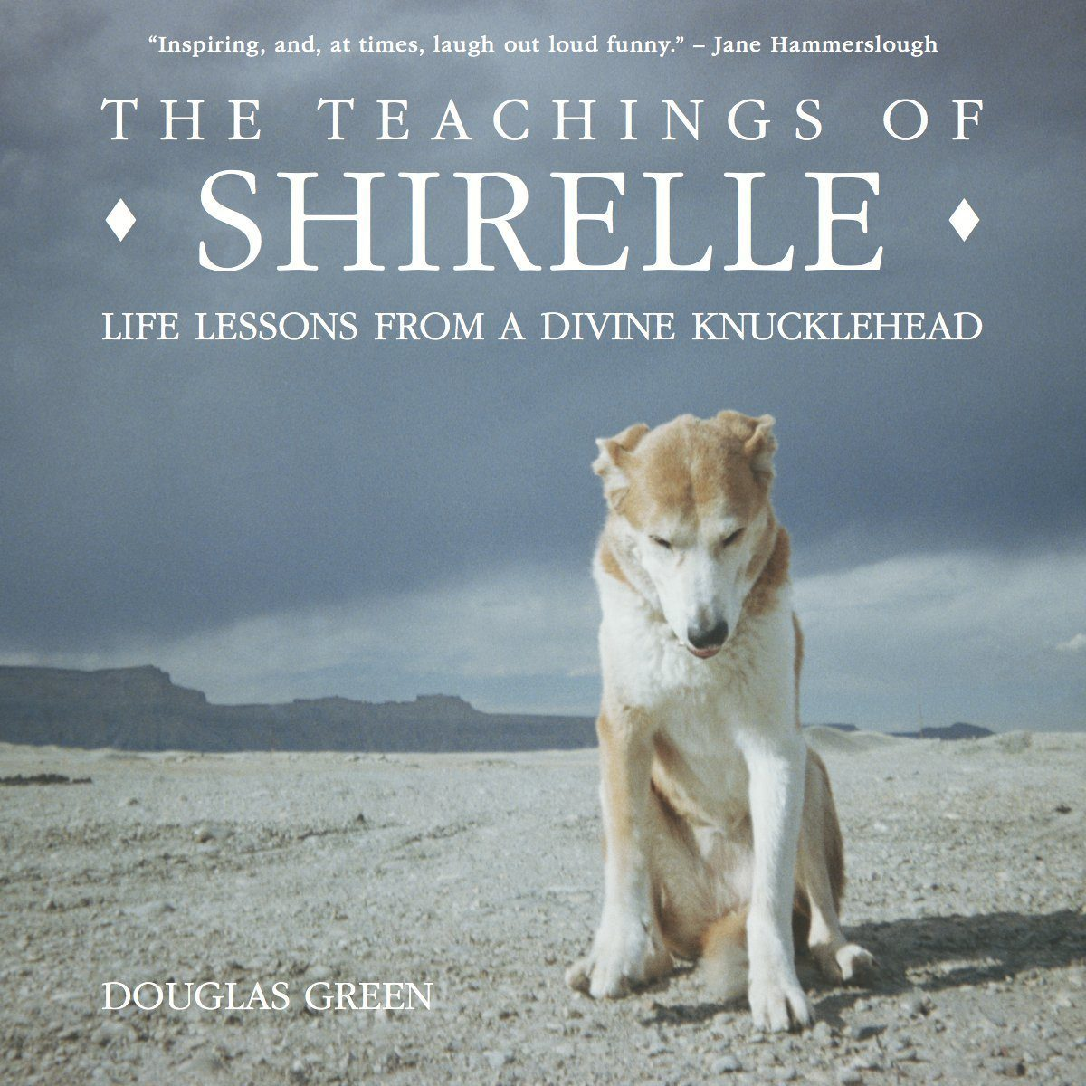 The Teachings of Shirelle: Life Lessons from a Divine Knucklehead http://amzn.to/1POLzuj
