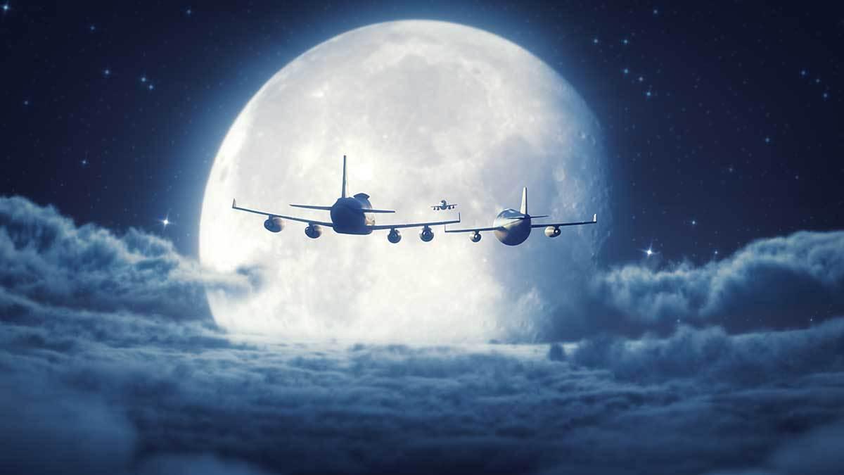 KLM-bluey