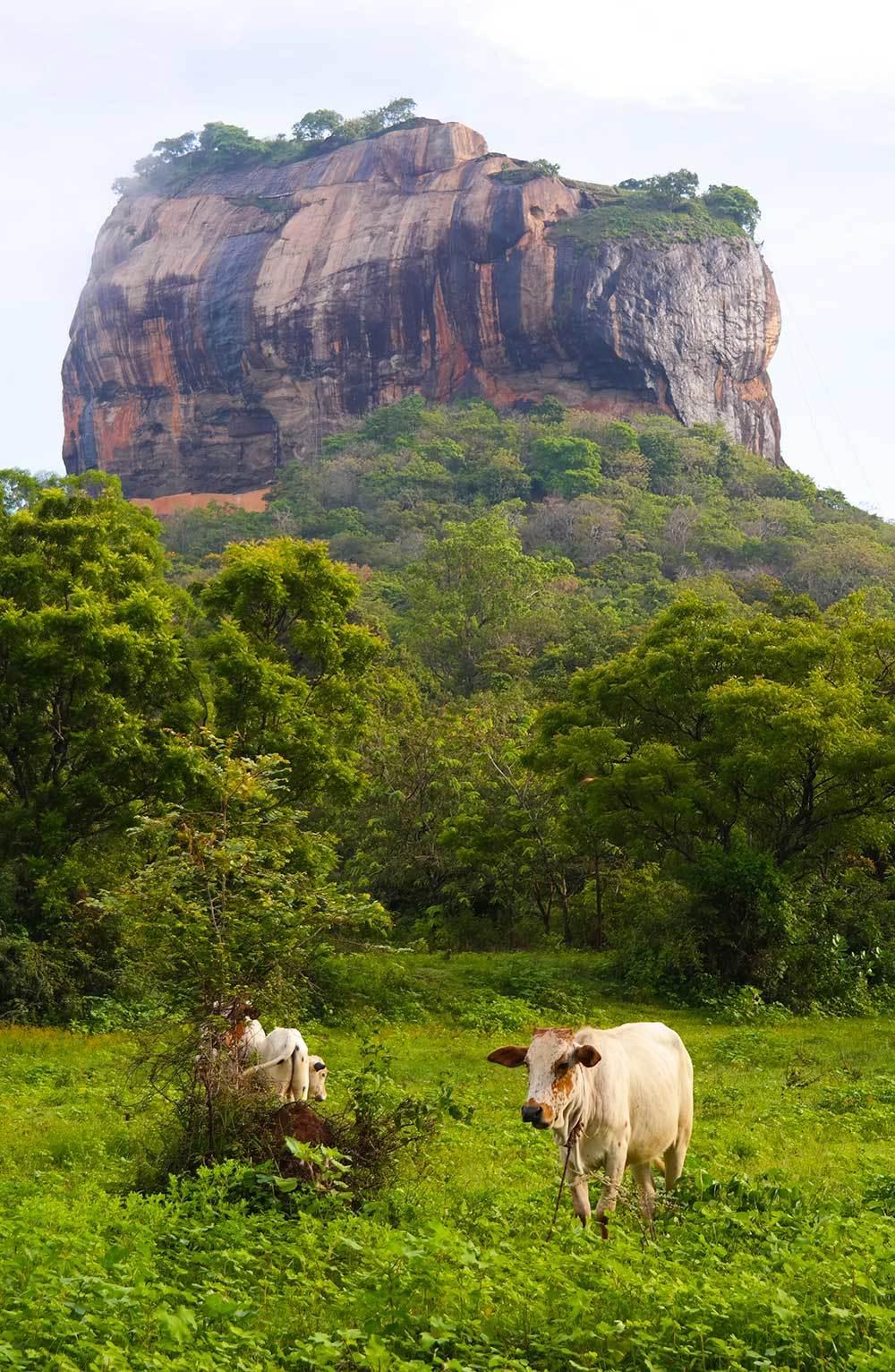 sigiraya-rock-sri-lanka