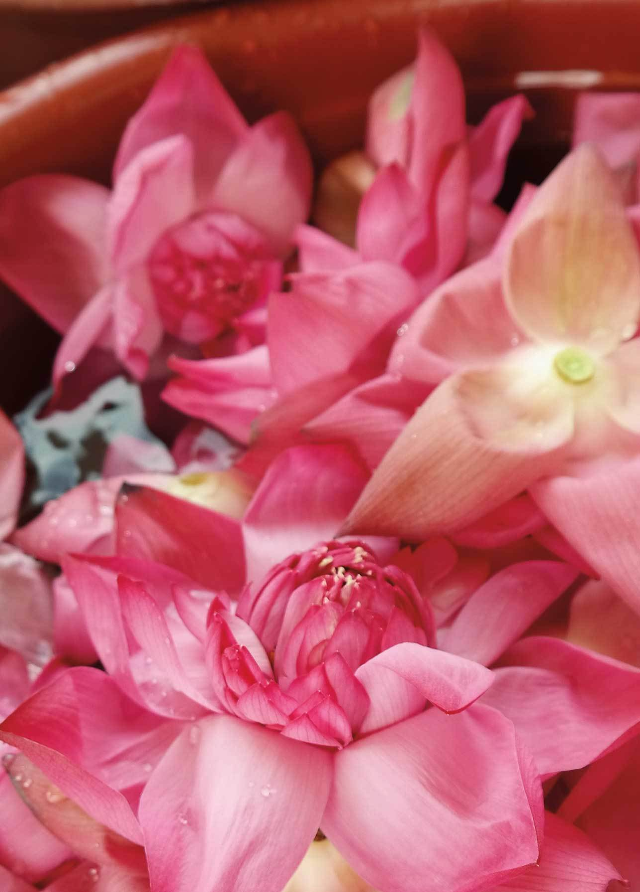 bali-flowers-inspiration