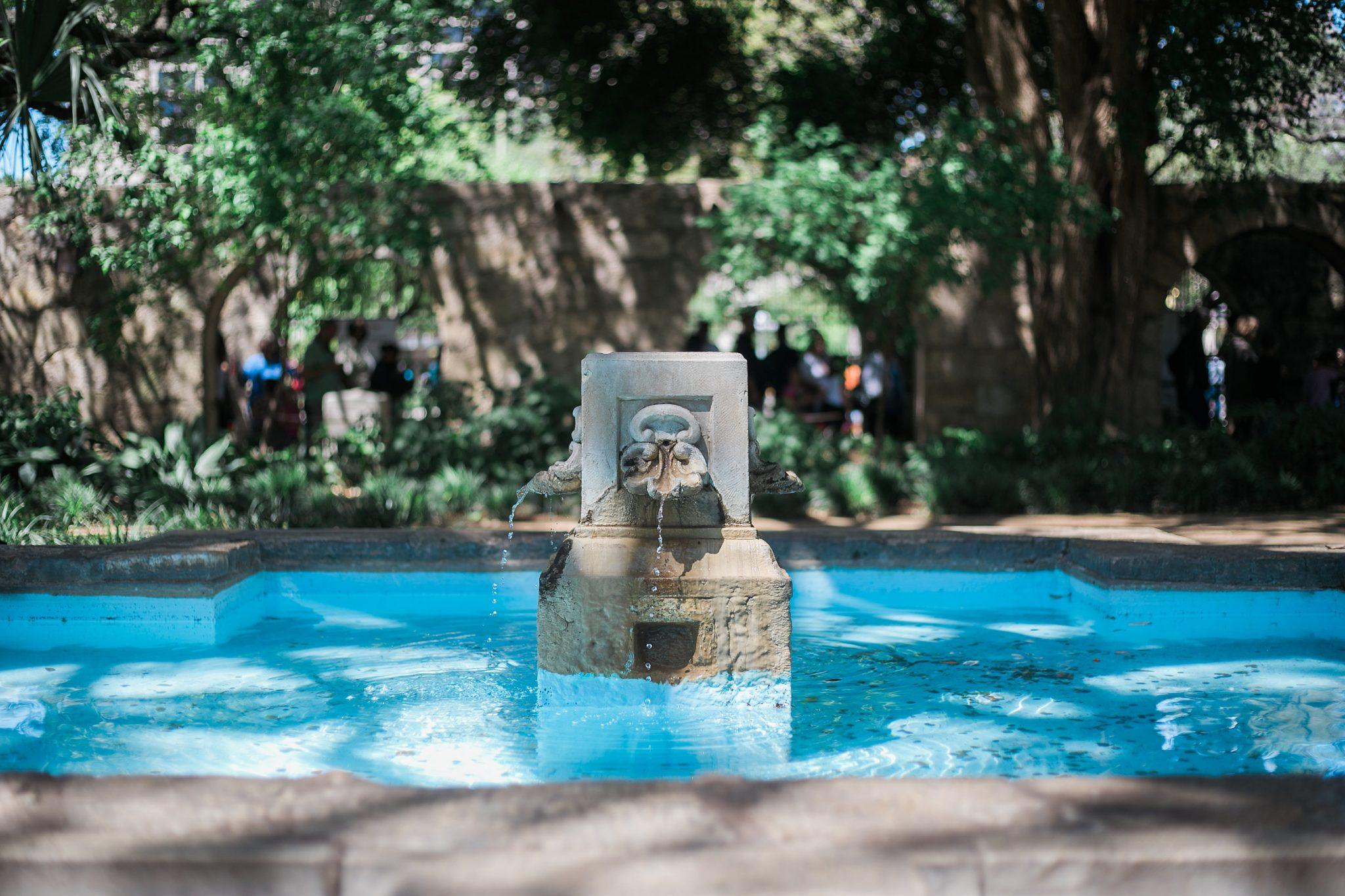 Alamo gardens in San Antonio