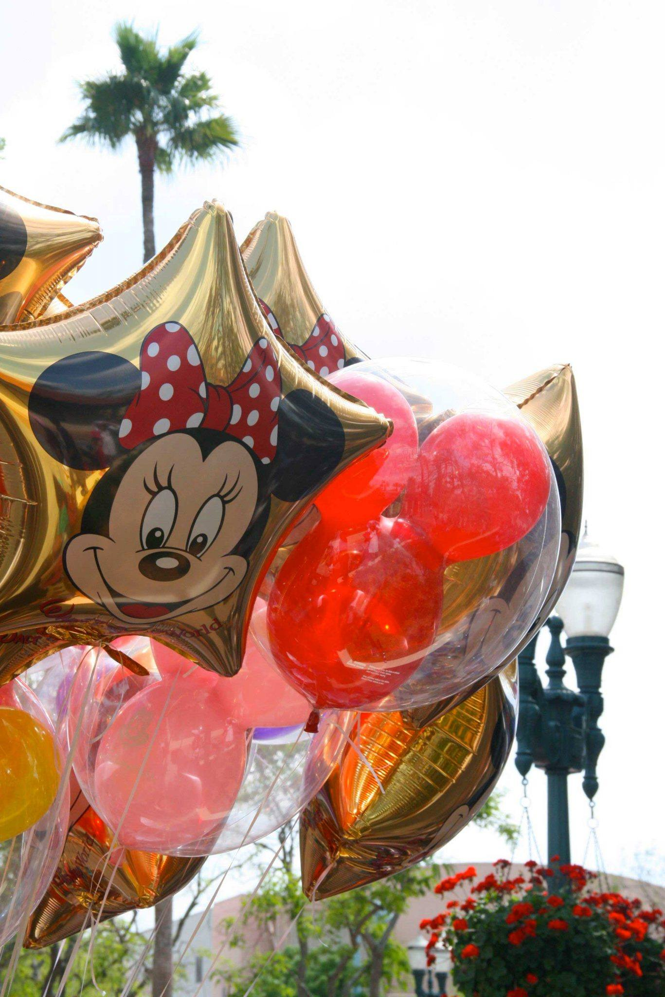 Balloons at Disney World