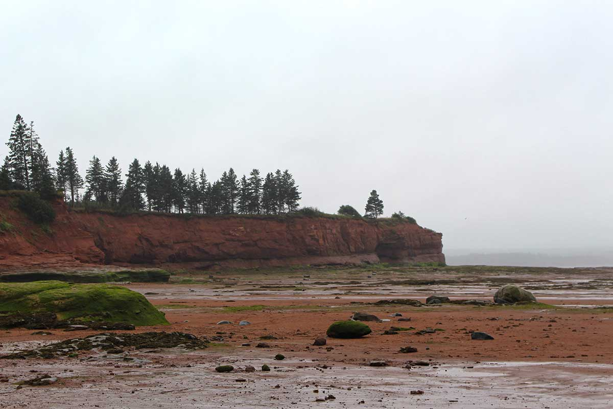 bayoffundy-tide